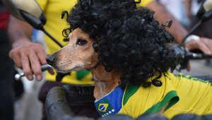 البرازيل كان ينبغي أن تتوج بطلة.. أرقام لن تصدقوها عن منتخبات كأس العالم