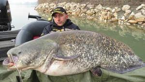 ما يجعل عملية الصيد هذه فريدة من نوعها، هو أنها تمت عبر بكرة الغزل (الصنارة)