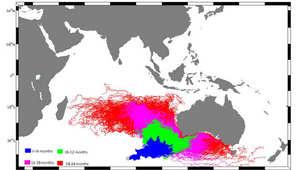 على الخريطة.. المسافة التي يمكن أن يقطعها حطام الطائرة الماليزية بحسب المدة الزمنية