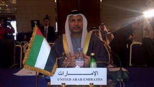 قرقاش يرد على مهاجمة هيرست لقيادات السعودية ومصر والإمارات: صدى حملات مزقت عالمنا العربي