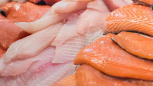 هل تريد أطفالاً أذكياء؟ أطعمهم السمك!