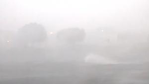 تعد الأقوى منذ 11 عاما.. عاصفة هيرمين تجتاح فلوريدا