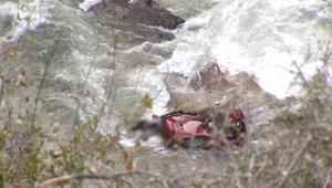 بالفيديو: سيارة تسقط من ارتفاع 150 مترا في نهر