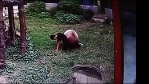 شاهد.. باندا يصارع رجلاً تسلل إلى حظيرته