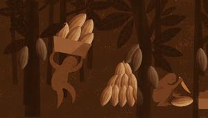 مذاق الشوكولاتة