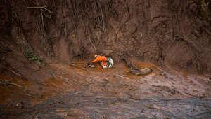 شاهد كيفية إنقاذ هذه الحيوانات من الموت الوشيك بالبرازيل..