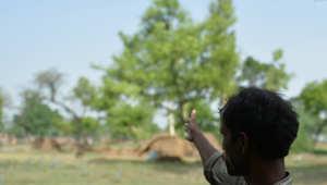 اغتصاب طفلة تنفيذا لأمر مجلس قرية هندية (صورة أرشيفية)