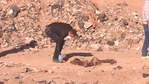 اكتشاف 3 مقابر جماعية على الأقل في بلدة قرب الموصل بالعراق