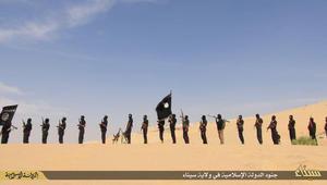 باحث يبين لـCNN معالجة أمنية من شقين لمواجهة داعش في مصر