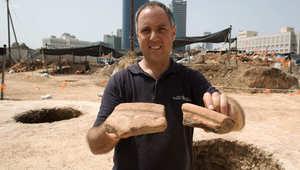 """كشف أثري إسرائيلي يؤكد: المصريون عاشوا في شمال """"فلسطين"""" قبل 5 آلاف عام"""