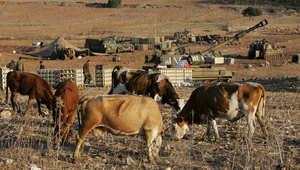 اتهامات لبنانية لدورية إسرائيلية بسرقة 4 رؤوس ماشية