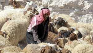 الإمارات والأردن بين العشر الأوائل في الحرية الاقتصادية.. وشمال إفريقيا يتراجع