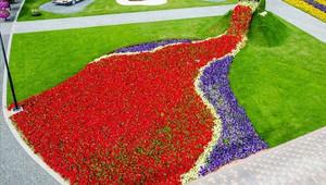 وتعرض الحديقة أشكالا مختلفة من الأزهار والورود.