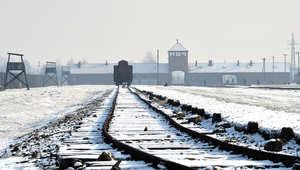 """""""الكنز النازي"""" المفقود.. علماء يؤكدون اكتشاف النفق ولكن.."""