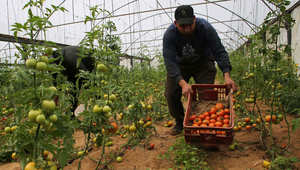 مستثمرون فلسطينيون ينتقدون تواضع التجارة العربية البينية