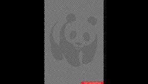 """خدعة """"الباندا العملاقة"""" تجتاح الإنترنت.. هل يمكنك رؤيتها وسط هذه الخطوط المتعرجة؟"""