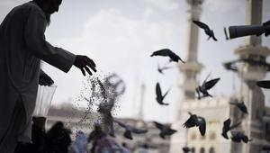 هيئة علماء السعودية ترّد على مؤتمر الشيشان: نحذر من النفخ فيما يشتّت الأمة