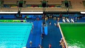 حادثة غامضة.. حوض غوص أولمبي يتحول إلى اللون الأخضر فجأة