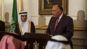 """مصر تعلن دعمها للضربات الروسية على """"الإرهاب"""" بسوريا"""