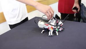 """الروبوتات تغزو مهرجان """"أيام العلوم"""" بالأراضي الفلسطينية"""