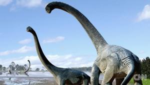 """""""سافاناصوروس"""".. اكتشاف حفريات نوع جديد من الديناصورات العملاقة"""