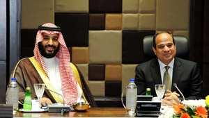 الرئيس المصري عبد الفتاح السيسي خلال لقائه وزير الدفاع السعودي