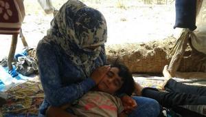 بعد إعلان الجزائر استقبالهم.. اللاجؤون السوريون العالقون لا يزالون على الحدود