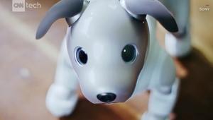 """شركة سوني تعيد روبوتها """"أيبو"""" بتقنيات مميزة"""
