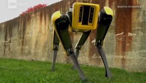 روبوت يخضع لعملية تجميل.. فكيف أصبح شكل نسخته الحديثة؟