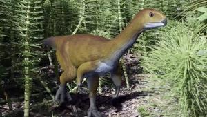 حل اللغز الغامض لديناصور