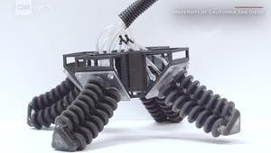 شاهد.. أول روبوت يمكنه السير على الأسطح المختلفة