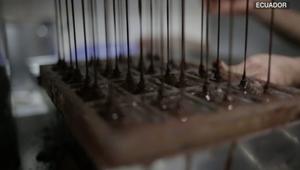 كيف نجحت هذه الشركة في صنع الشوكولاتة؟