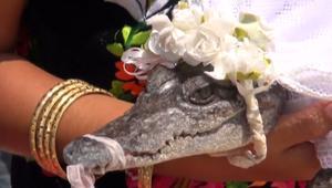 شاهد زواج عمدة مكسيكي من.. تمساح!