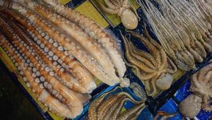 جولة داخل أكبر سوق للأسماك في سيؤول