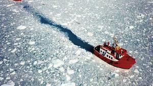 حفلة شواء وسط الكتل الجليدية المتساقطة في غرينلاند
