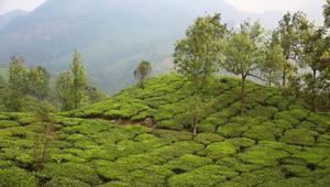 سلسلة جبال في الهند أقدم من الهيملايا