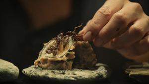 هكذا تصنع السوشي من الحشرات والحلزونات والأعشاب الضارة
