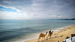 """شركة تنقيب تعلن اكتشاف احتياطي نفط """"مؤكد"""" قبالة سواحل تونس"""