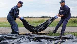 عمال الانقاذ الأوكرانيون يجمعون جثث ضحايا الطائرة الماليزية 19 يوليو/ تموز 2014