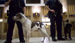 مقتل متسلق سور البيت الأبيض بعد مهاجمة شرطي ببنسلفانيا
