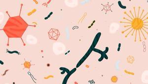 هل تعرف..الجسم يحتوي بكتيريا أكثر من الخلايا البشرية؟
