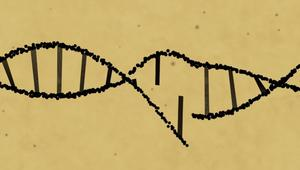 علماء يتمكنون من إزالة مرض وراثي بأجنة بشرية