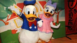 دونالد داك وديزي داك من أبرز شخصيات شركة والت ديزني