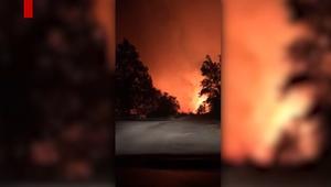 حرائق تلتهم منطقة في ولاية كاليفورنيا