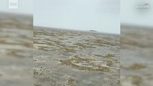 مياه المحيط تختفي في جزر البهاماس.. شاهد ماذا حدث!