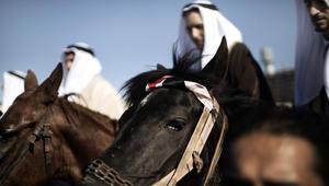 الخيول في حفلات الزفاف حول العالم
