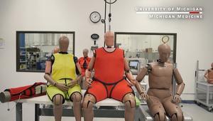 شكل البشر يتغير والدليل.. دمى اختبارات الحوادث