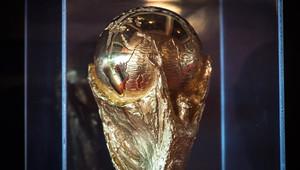 كأس العالم جاب بعضا من دول العالم في عام 2013