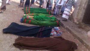 الكلاب تلتهم جثث جنود الجيش.. صورة تثير استياء الشارع اليمني