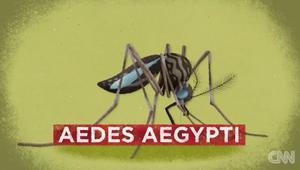 -zika-animation-dr-sanjay